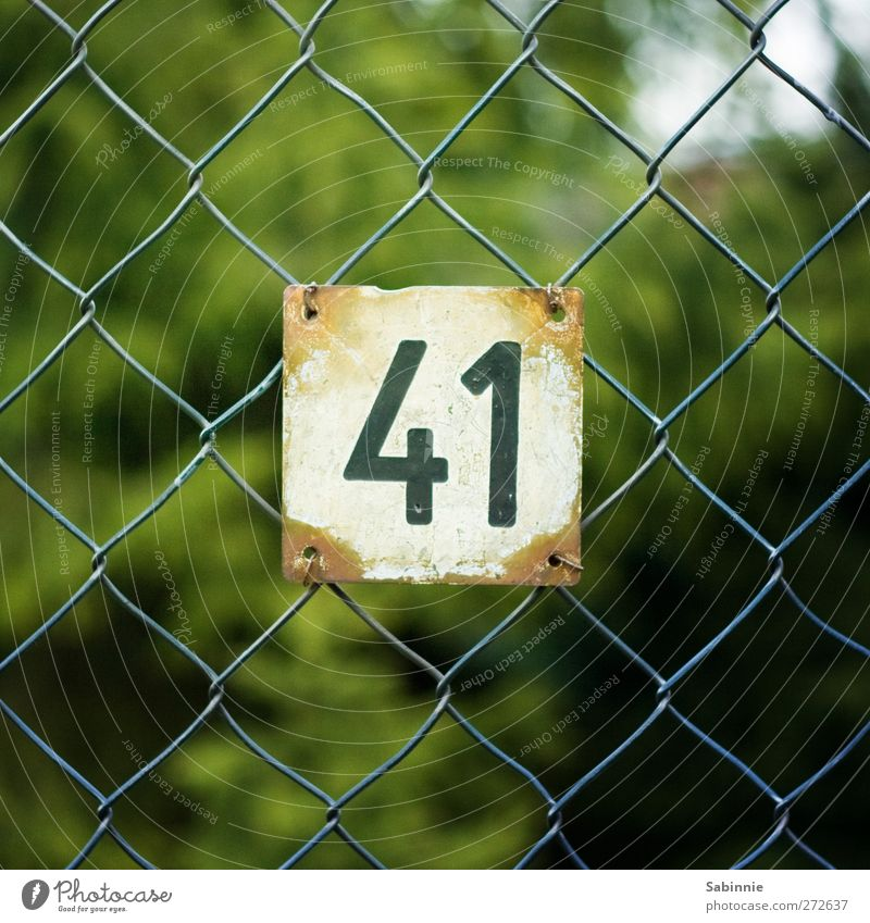 41 Wire netting fence House number Number plate Digits and numbers Entrance Metal Green Black White Colour photo Multicoloured Exterior shot Close-up Detail Day