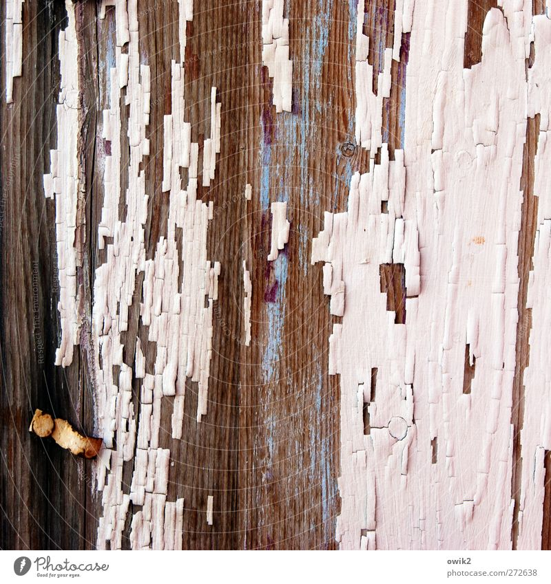 Blue Old White Black Wood Dye Line Brown Pink Poverty Design Change Transience Derelict Part Past