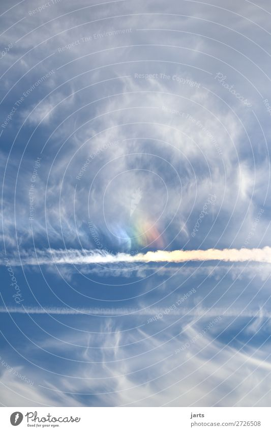 intothesky II Sky Clouds Beautiful weather Natural Blue Freedom Nature Rainbow Vapor trail Colour photo Multicoloured Exterior shot Deserted Copy Space left