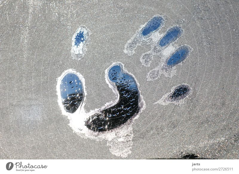 cool touch Hand Fingers Winter Beautiful weather Ice Frost Glass Fluid Fresh Cold Wet Blue Gray Touch Window pane Colour photo Subdued colour Exterior shot