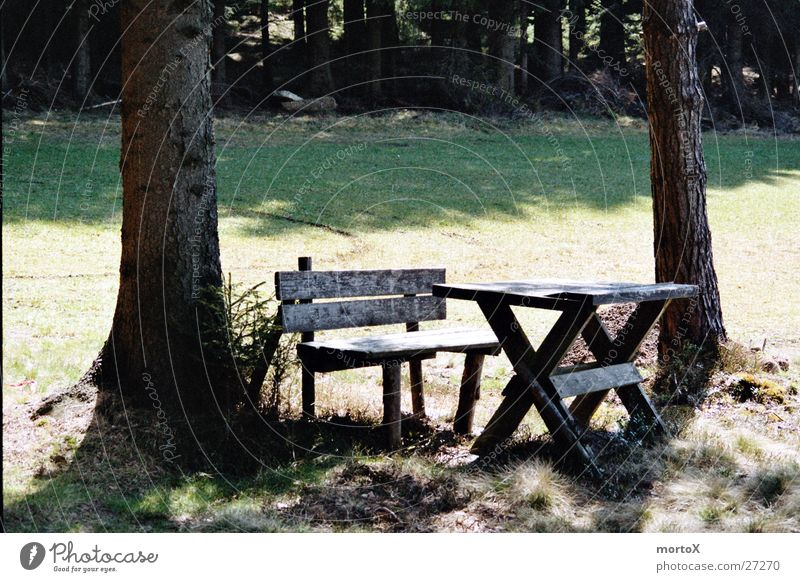 Rest in the green Table Break Cozy Calm Transport Bench