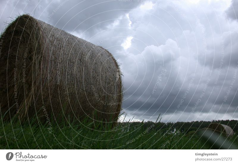 Straw and cloud bales Clouds Bale of straw Hay bale Threat Dark Grass Meadow Storm Gray