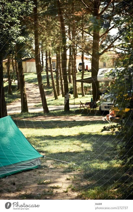 camping feeling Leisure and hobbies Vacation & Travel Trip Camping Summer Environment Nature Tree Meadow Forest Mobile home Authentic Simple Green Relaxation