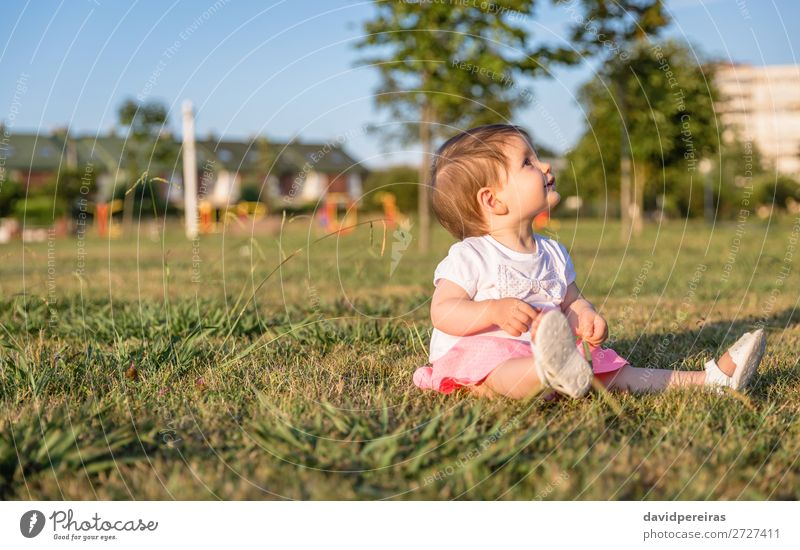 Happy baby girl playing sitting on a grass park Lifestyle Joy Beautiful Leisure and hobbies Playing Summer Garden Child Human being Baby Toddler Infancy Nature