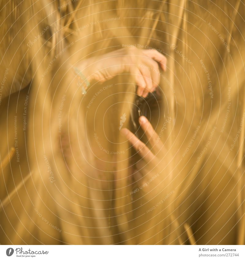 Human being Nature Hand Plant Sun Environment Yellow Warmth Spring Grass Gold Observe Beautiful weather Stop Mysterious Take a photo