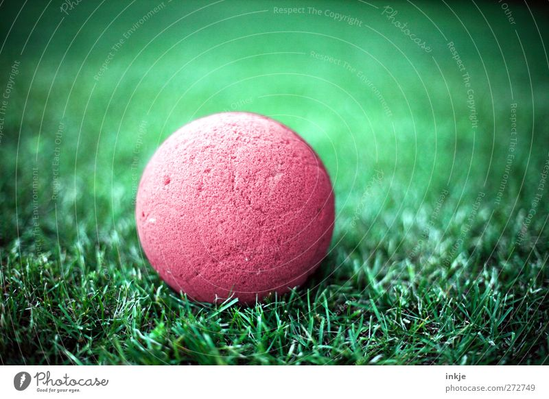 The ball is round. Playing Ball Grass Lie Near Round Green Red Leisure and hobbies Vignetting Colour photo Exterior shot Close-up Deserted Day Light Contrast