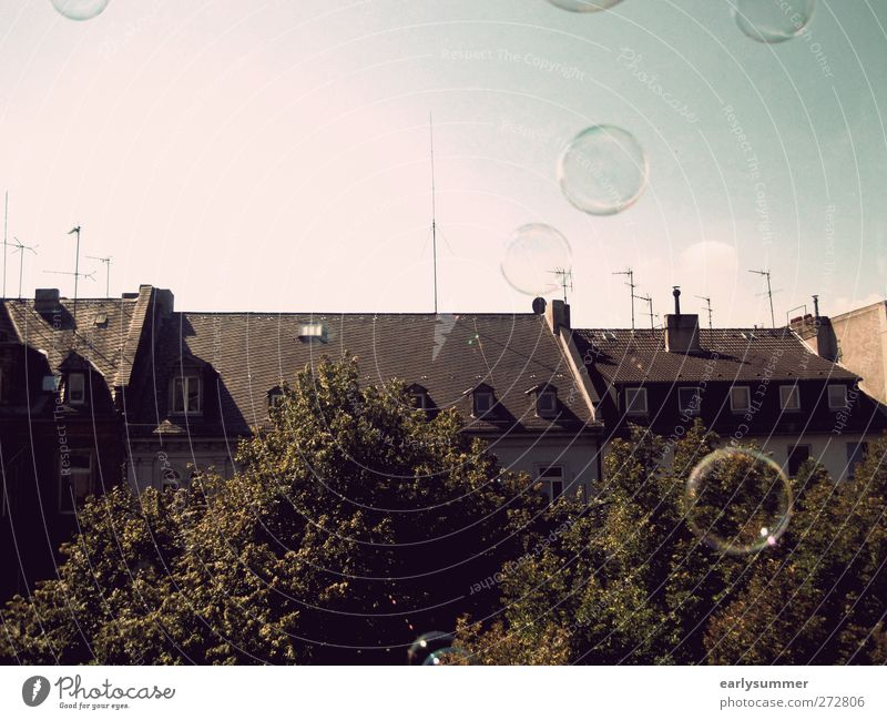 one day baby we'll be old House (Residential Structure) Flying Free Brown Soap bubble Roof Sky blue Tree Window Antenna Freedom View from a window Wiesbaden