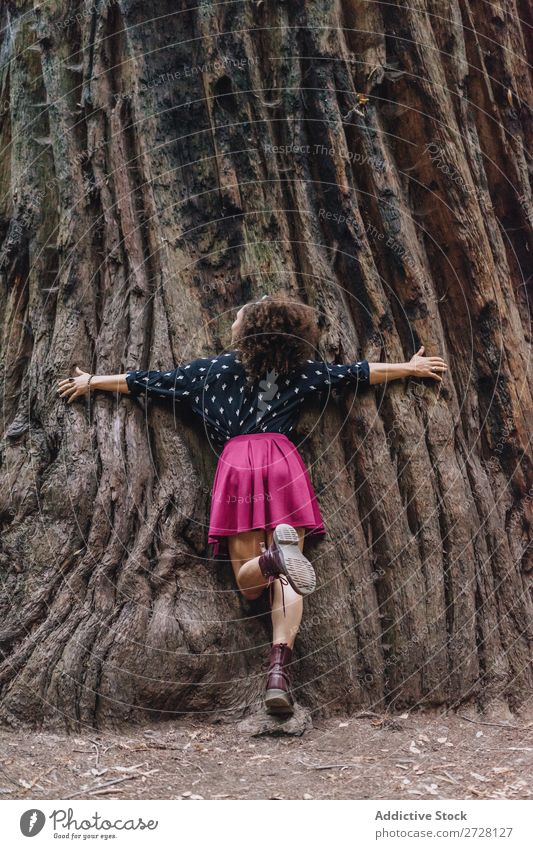 Woman embracing giant tree Tree huge Park Trunk Embrace Nature Love Relaxation wonderland Harmonious Environment Forest Dream Stand Natural Protection Traveling