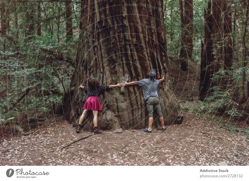 Friends hugging a giant tree Woman Tree embracing huge Park Trunk Embrace Nature Love Relaxation wonderland Harmonious Environment Forest Dream Stand Natural