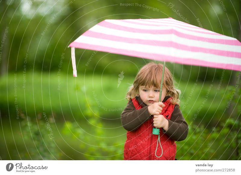 rain Human being Feminine Child Toddler Girl Infancy 1 - 3 years Nature Plant Summer Autumn Bad weather Rain Thunder and lightning Blonde Carrying Pink Red