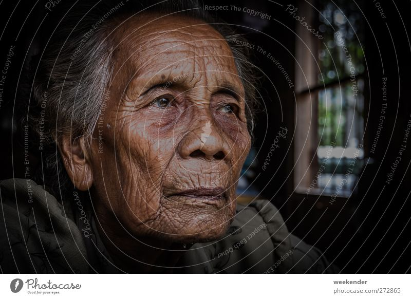 Deep in thought Human being Feminine Woman Adults Female senior Grandmother Head 1 60 years and older Senior citizen Gray-haired Emotions Moody Obedient