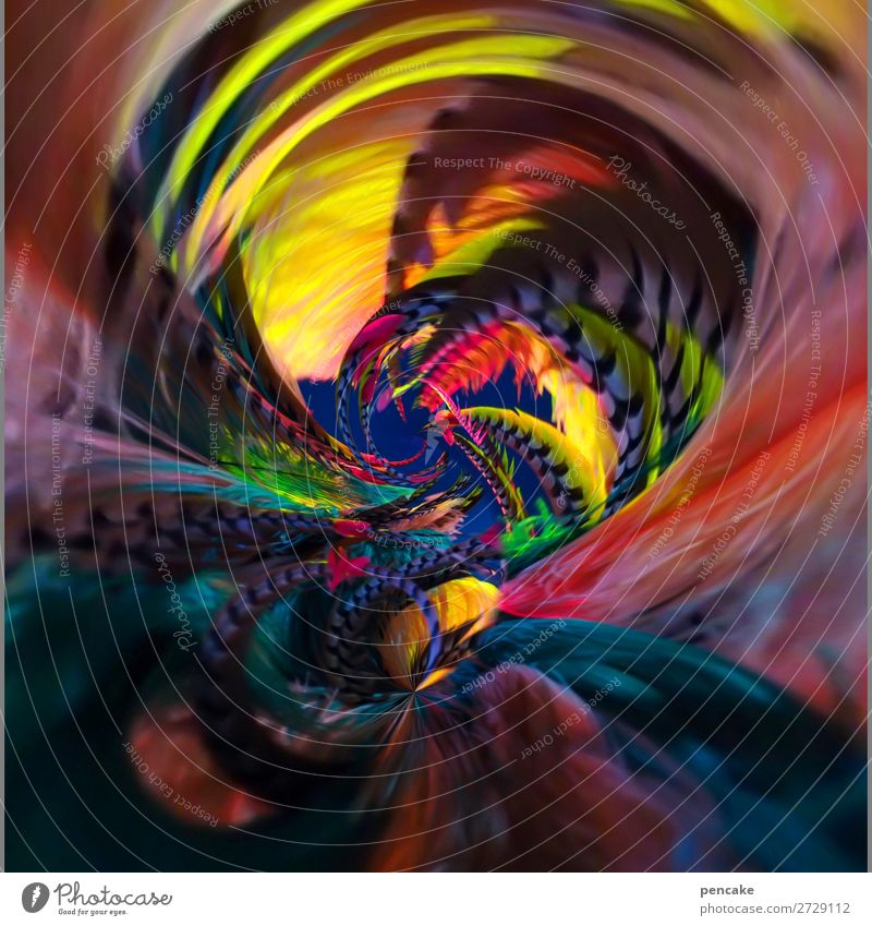 A cauldron of colours Style Exotic Stage Dance Dancer Event Shows Fashion Accessory Fantastic Fluid Many Feather Circus Swirl Spiral Rotation Round Colour photo