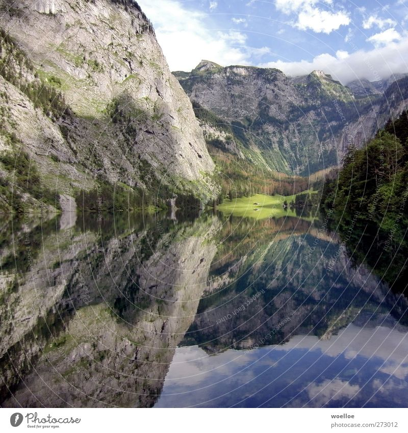 Mirror Mirror... Mountain Environment Nature Landscape Water Sky Beautiful weather Rock Alps Röthbach Lakeside Lake Obersee Lake Königssee Berchtesgaden