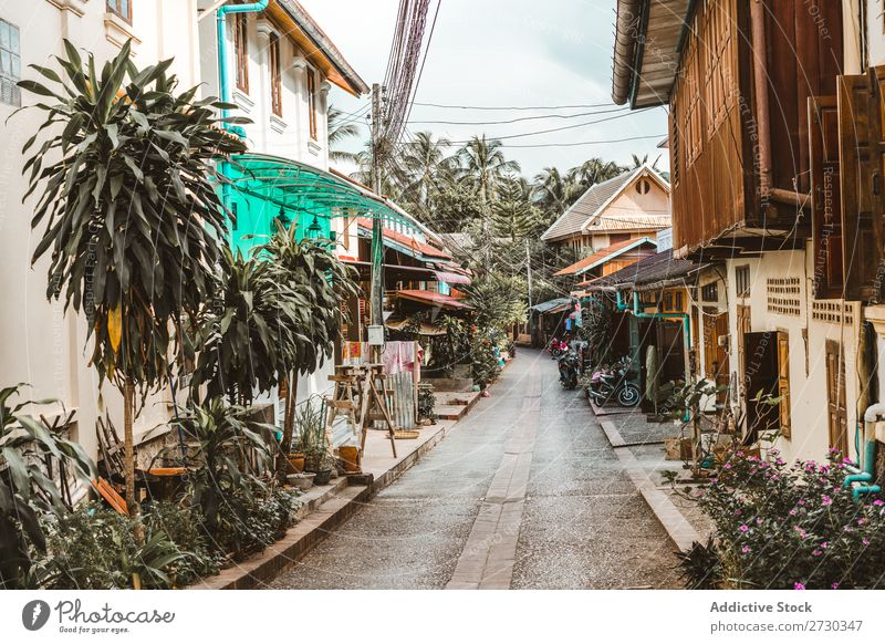 Narrow street with small houses Street House (Residential Structure) Town Architecture Perspective Vacation & Travel asian City Old Alley Tradition Tourism
