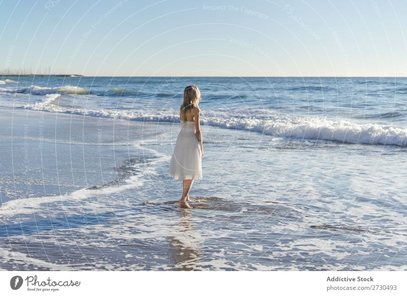 Bride walking on shore in sunlight Woman Beach Wedding Movement Blue sky Nature Natural