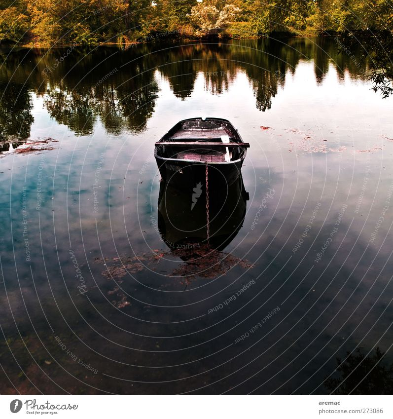 resting place Nature Landscape Water Sky Summer Tree Forest Lakeside Pond Fishing boat Rowboat Dark Calm Colour photo Subdued colour Exterior shot Deserted Day