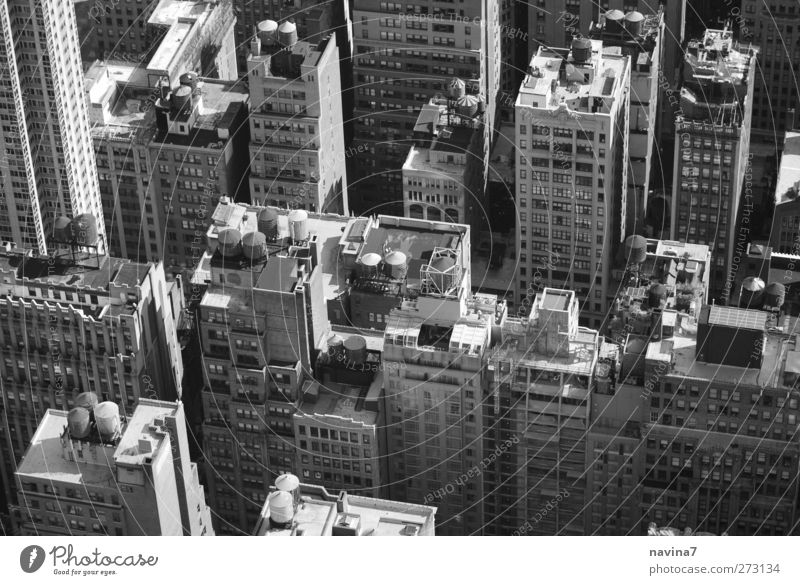 Rocky 1 New York City Deserted House (Residential Structure) High-rise Building Roof Living or residing Above Gray Cistern Black & white photo Exterior shot