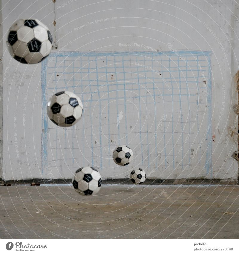 victory Sports Sporting event Soccer Sporting Complex Football pitch To fall Virtuous Enthusiasm Euphoria Honor Tolerant Fairness Respect Colour photo