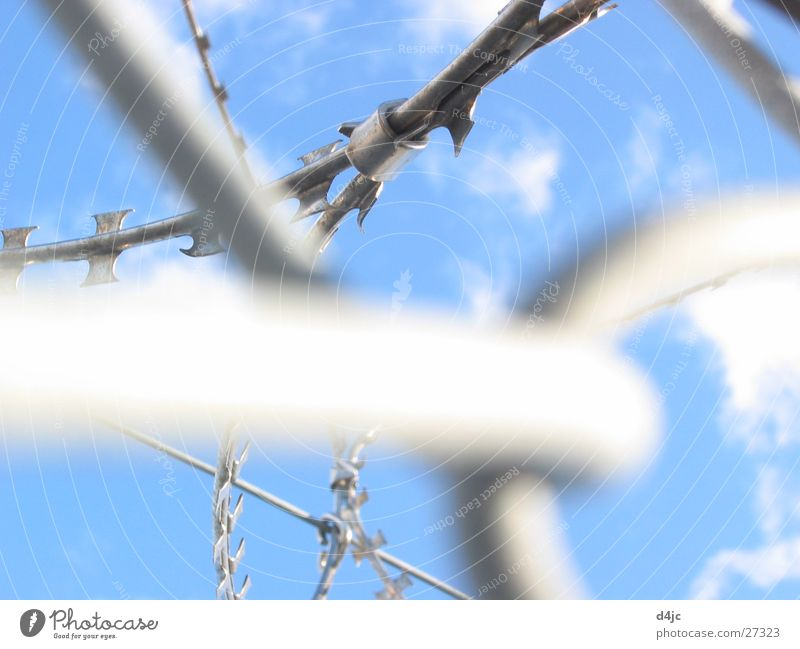 captive Wire Barbed wire Clouds Dangerous Captured Leisure and hobbies Sky Metal Point Penitentiary Muddled Blue