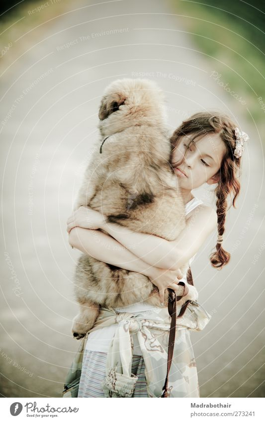 young girl carries her puppy Child Feminine Girl Infancy Life 1 Human being 8 - 13 years Landscape Field Lanes & trails Brunette Long-haired Braids Pet Dog
