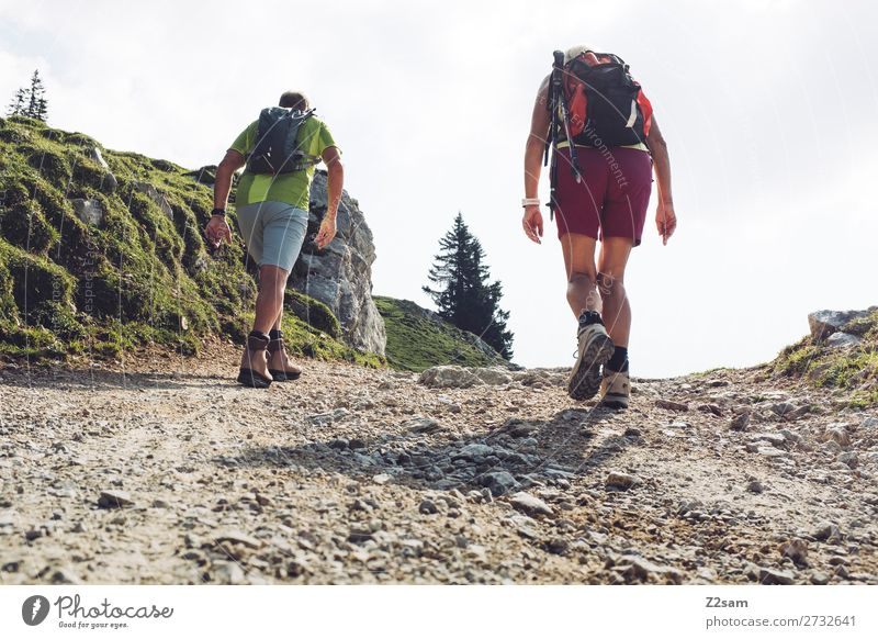 Sporty pensioners hiking Leisure and hobbies Summer Mountain Hiking Female senior Woman Male senior Man Partner 60 years and older Senior citizen Nature