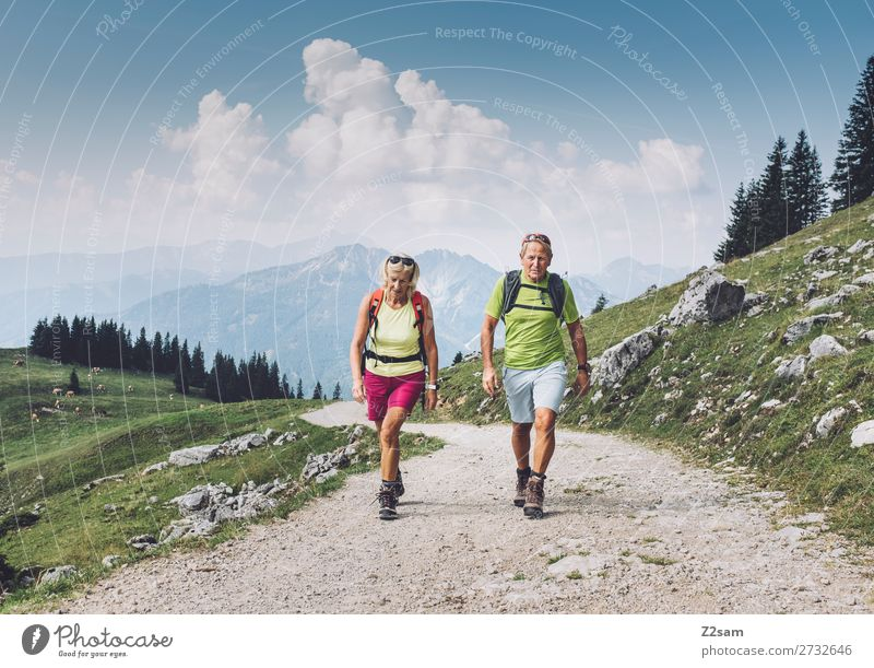 Sporty pensioners hiking in Upper Bavaria Leisure and hobbies Vacation & Travel Trip Adventure Mountain Hiking Female senior Woman Male senior Man 2 Human being