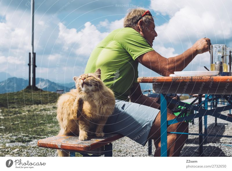 Cat sitting next to eating man in the alpine hut Leisure and hobbies Mountain Hiking Male senior Man 60 years and older Senior citizen Nature Landscape Sky