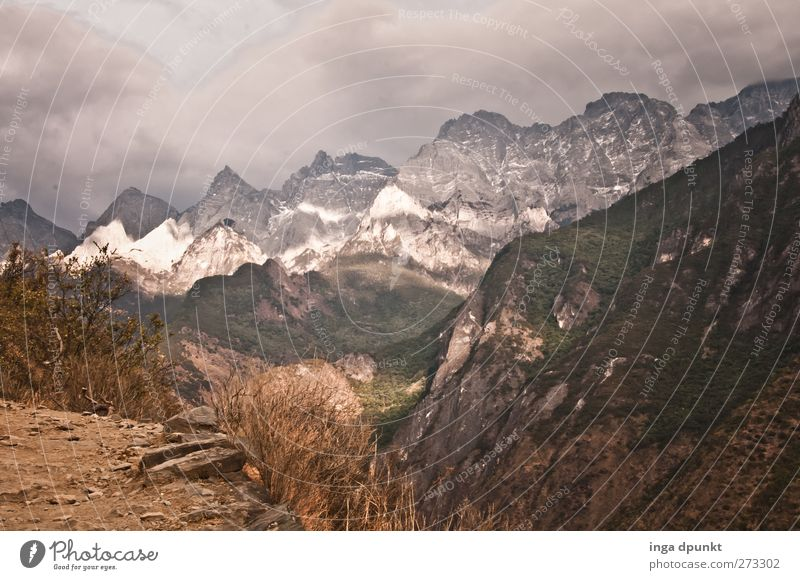Nature Plant Winter Environment Landscape Dark Mountain Earth Weather Rock Travel photography Wind Fear Climate Exceptional Adventure