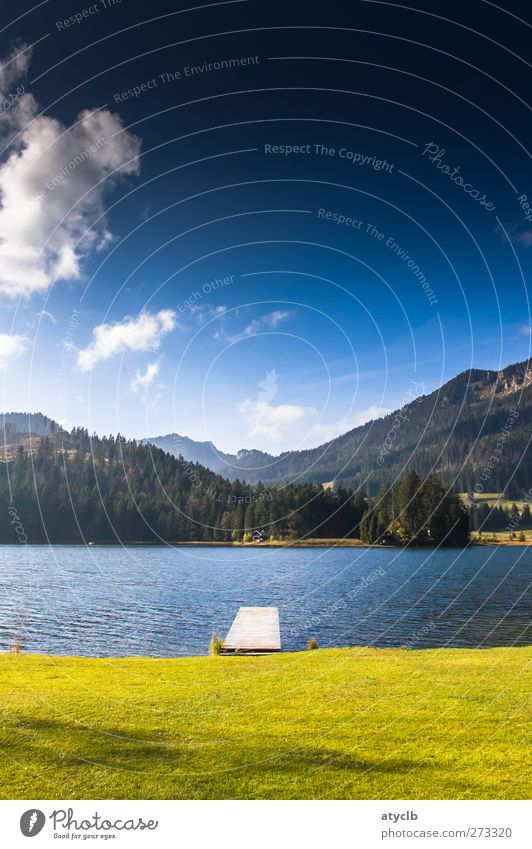 Spitzingsee Vacation & Travel Summer Summer vacation Mountain Landscape Water Sky Clouds Blue Green Pure Lake Lakeside Nature Mountain forest Meadow Idyll Calm