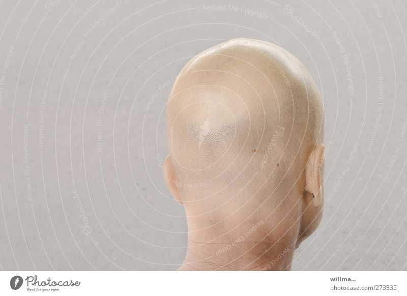 Bald man from behind. Hair-tip control Man Adults Head Ear Neck 1 Human being Hair and hairstyles Bald or shaved head Bright Back of the head Looking away