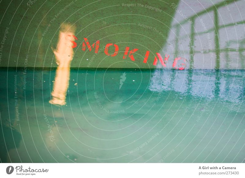 .... Navigation Cruise Passenger ship Ferry On board Exceptional Simple Green Tobacco products Railing Floor covering Wet Point of light Double exposure