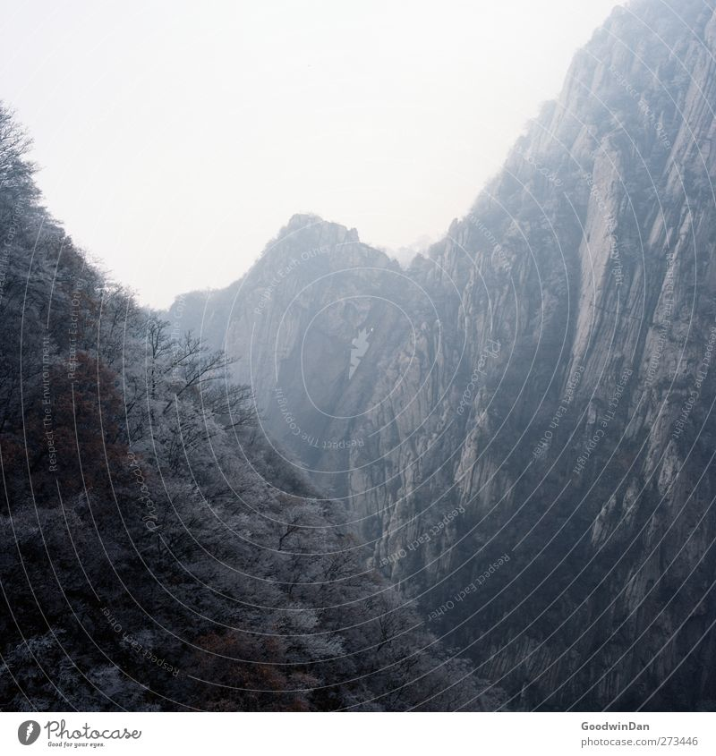 Into the wilderness. Environment Nature Winter Climate Weather Fog Ice Frost Hill Rock Mountain Authentic Gigantic Large Infinity Cold Colour photo