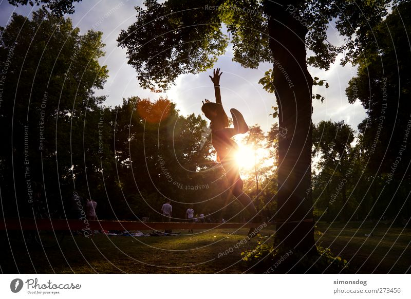 linejump Human being Young man Youth (Young adults) Life 1 Sun Tree Park Jump Joy Leisure and hobbies Funsport Summer Meadow Illuminate Ease slackliner Balance