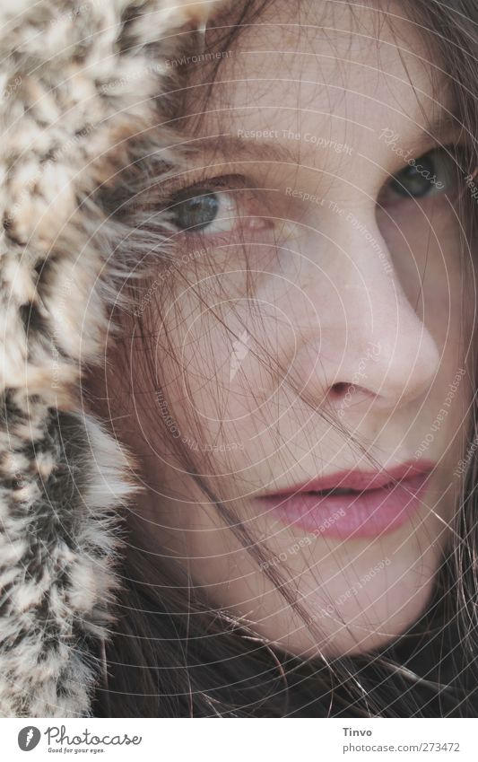 Human being Woman Youth (Young adults) Winter Adults Cold Feminine Warmth Young woman Climate Natural Pelt Cap Brunette Long-haired Pallid