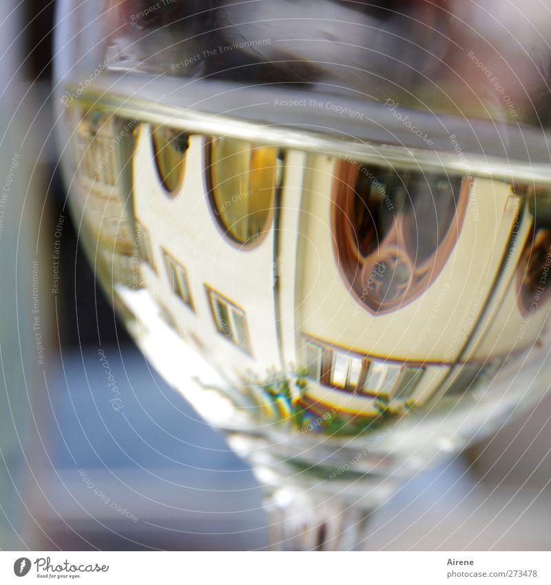 SIGHTSEEING Beverage Alcoholic drinks Wine White wine Glass Wine glass Joy Leisure and hobbies Sightseeing City trip Summer Drinking Freiburg im Breisgau Town