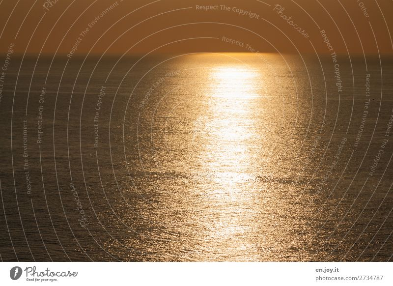 Another golden one Vacation & Travel Summer Summer vacation Sun Ocean Nature Elements Cloudless sky Horizon Sunrise Sunset Sunlight Climate Climate change