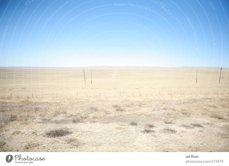 wide expanse Nature Landscape Earth Sky Cloudless sky Horizon Beautiful weather Warmth Drought Desert Gobi Mongolia Gigantic Glittering Infinity Natural Gloomy
