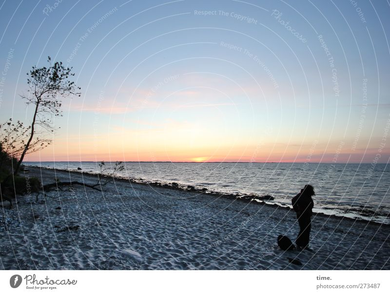 Human being Sky Water Beautiful Tree Beach Calm Environment Coast Happy Dream Horizon Moody Contentment Authentic Esthetic