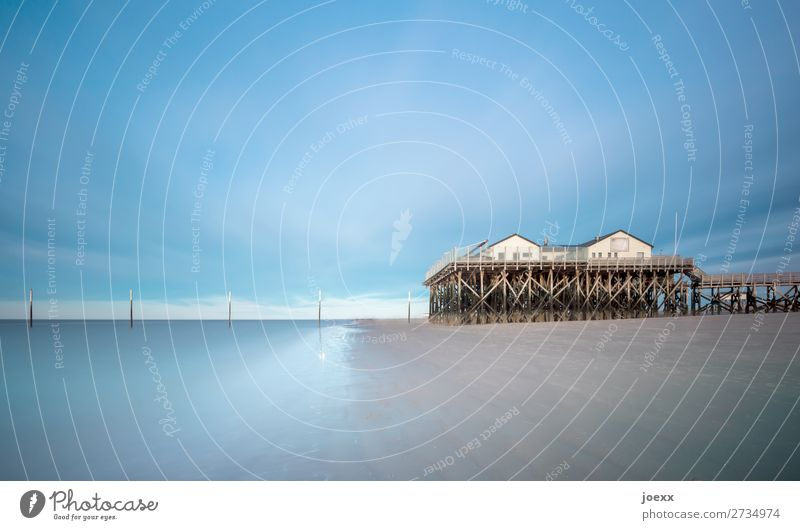 You are my house Water Sky Beach North Sea St. Peter-Ording House (Residential Structure) Pile-dwelling Wood Tall Blue Brown White Trust Safety Protection Calm