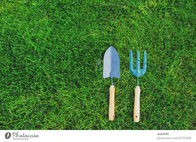 garden tools on green lawn background. Leisure and hobbies Summer Garden Gardening Tool Technology Environment Nature Landscape Plant Earth Grass Growth Green