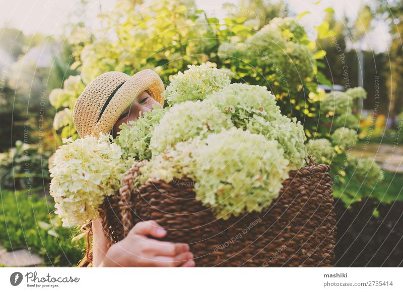 happy romantic kid girl playing and picking flowers Lifestyle Joy Harmonious Leisure and hobbies Playing Summer Garden Child Gardening Environment Nature
