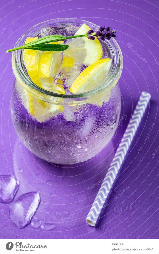 Iced lavender water with lemon, lavender and drinking straw on a violet background Beverage Lemon Cold drink fruit Lavender Herbs and spices vitamin water