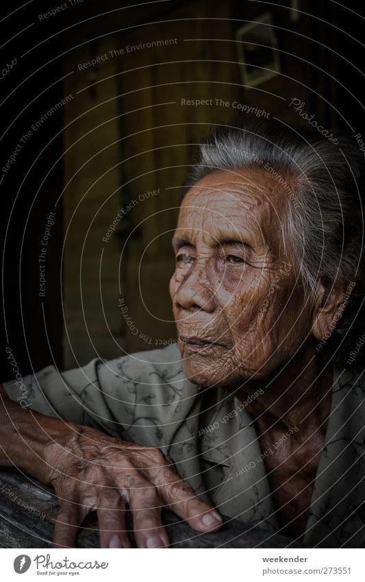 memories Skin Face Feminine Grandmother Senior citizen Head Hand Fingers 1 Human being 60 years and older Hut Sit Brown Gray Emotions Humanity Serene Calm Trust