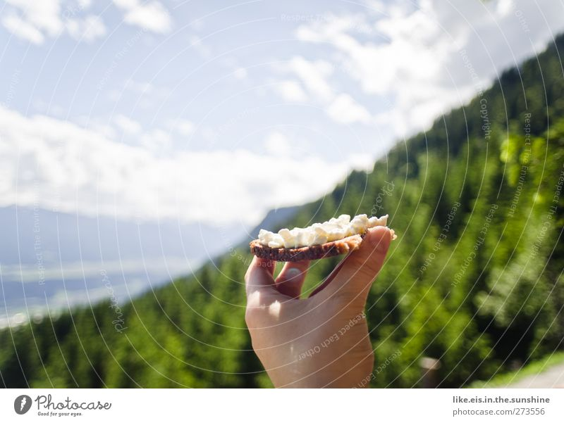 Sky Nature Hand Tree Summer Clouds Relaxation Landscape Environment Mountain Eating Healthy Contentment Food Hiking Nutrition
