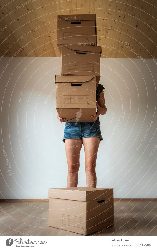 Moving boxes, Woman with boxes Flat (apartment) House (Residential Structure) Dream house Moving (to change residence) Arrange Room Adults Hand Legs 1