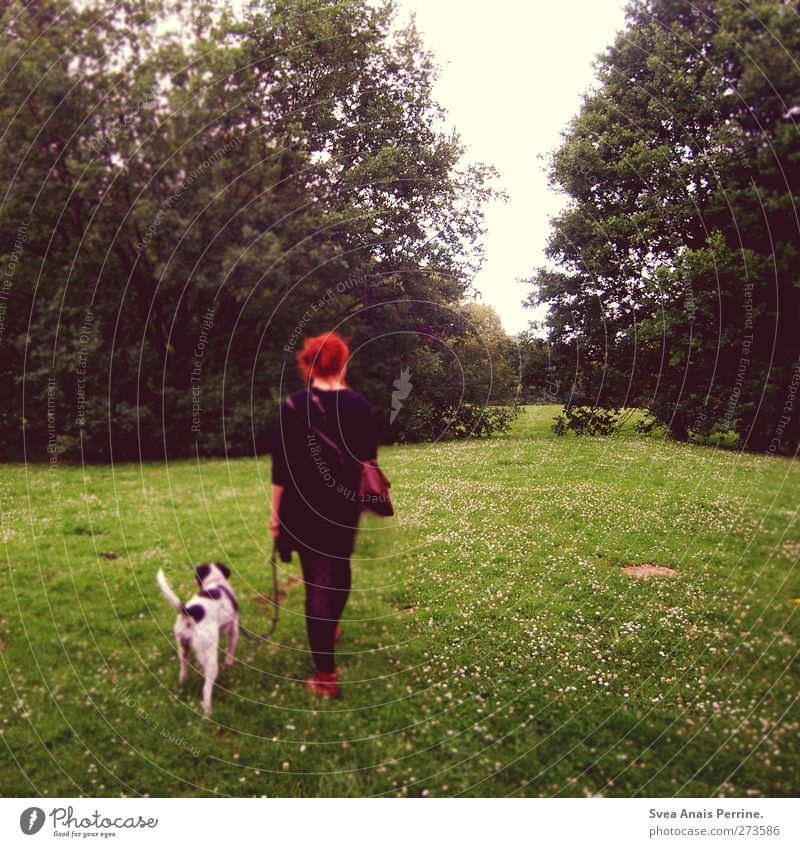 Dog Human being Woman Nature Youth (Young adults) Tree Animal Adults Meadow Feminine Young woman Fashion Going 18 - 30 years To go for a walk Beautiful weather
