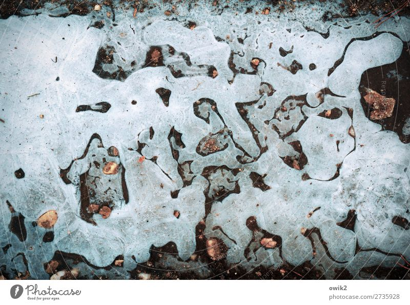 Nature makes art Environment Winter Ice Frost Puddle Frozen Stone Calm Bizarre Flow Colour photo Exterior shot Detail Abstract Structures and shapes Deserted