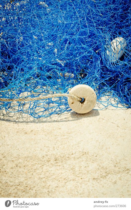 fishing net Sand Chaos Attachment Fishing net Net Reticular Fishing float Blue Plastic Rope Connection Fishery String Colour photo Exterior shot Deserted