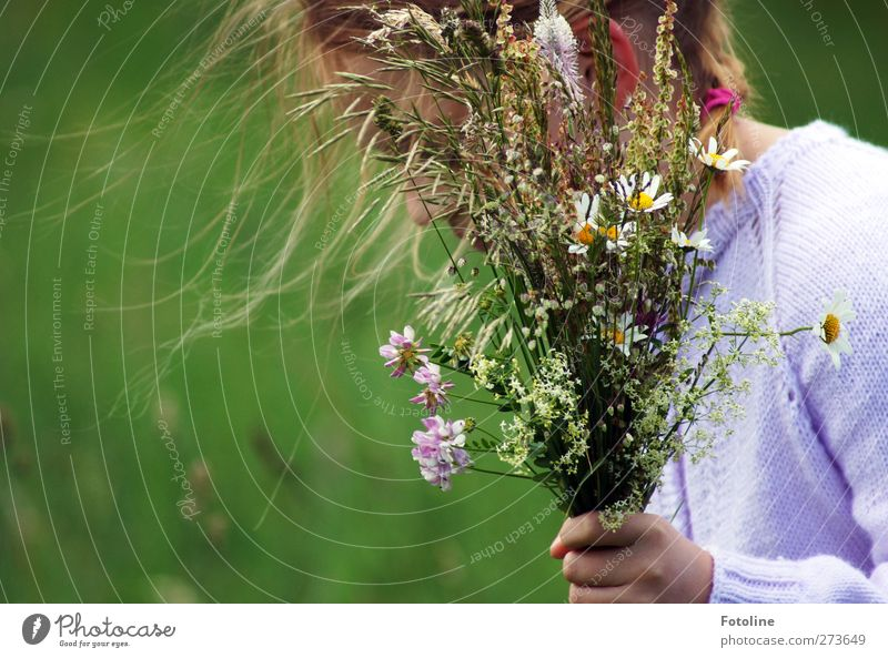 Human being Child Nature Hand Plant Summer Flower Girl Environment Meadow Feminine Grass Hair and hairstyles Head Blossom Garden