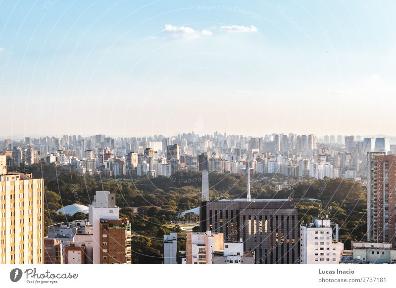 Elevated View of Ibirapuera Park in Sao Paulo, Brazil (Brasil) House (Residential Structure) Garden Office Business Environment Nature Sky Tree Grass Leaf